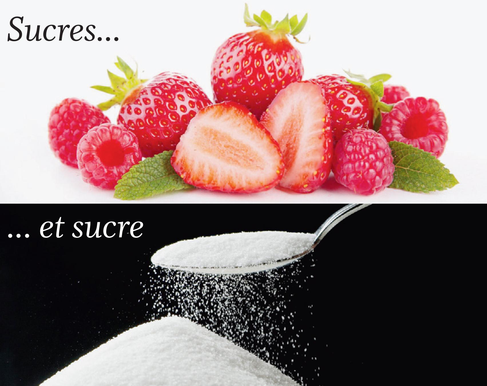 Sucres… et sucre – A votre bonne santé par Camille Despland